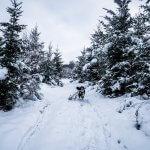 Randonnée hivernale à Montenau